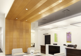 Seeyond Transition Ceiling Cloud Contract Design