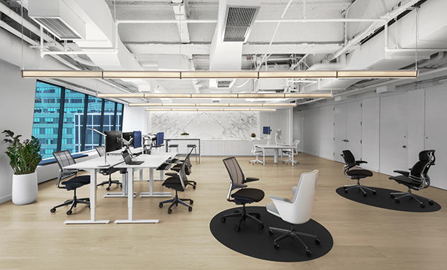 humanscale business plan